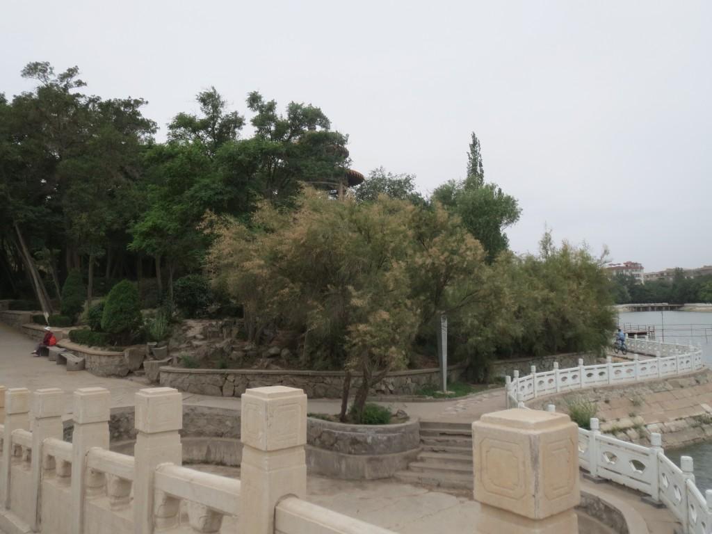 白银区金鱼公园风景
