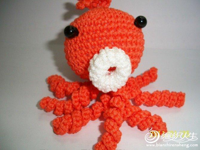 红章鱼.jpg