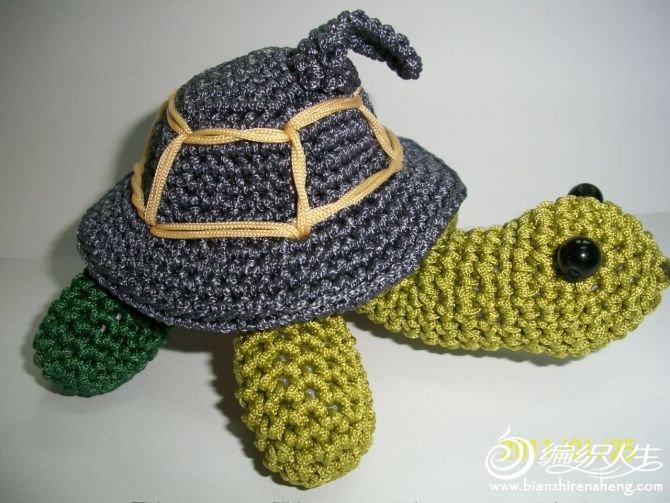 灰背龟.jpg