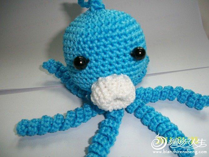 蓝章鱼.jpg