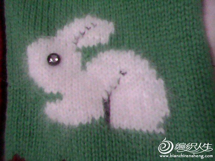 小兔子13.jpg