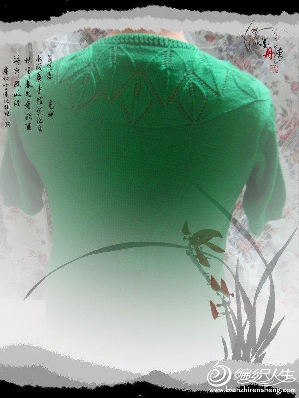 绿色三叶衣衣背面.jpg