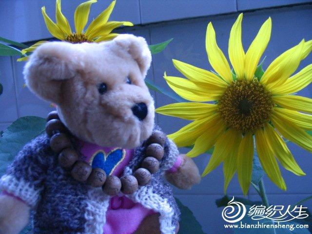 时尚小熊.jpg