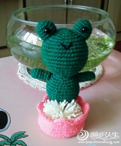 蛙2.jpg