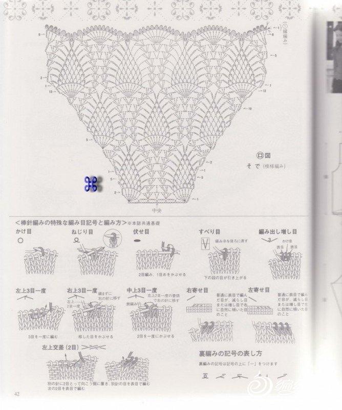 菠萝图解1.jpg