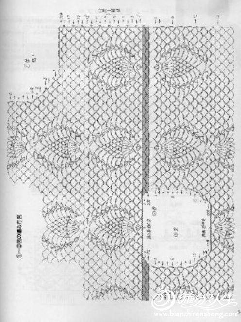 菠萝短袖图解2.jpg