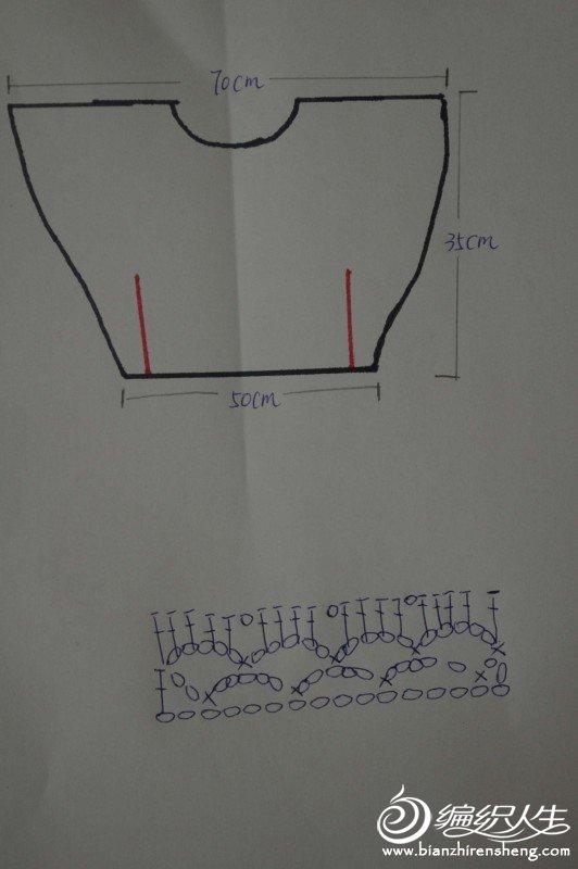 图解中红线为缝合处