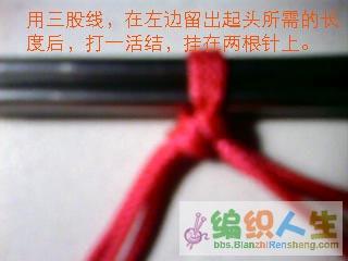 2036046_23.jpg