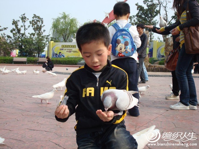 前段时间去恐龙园玩时拍的,喂鸽子呢