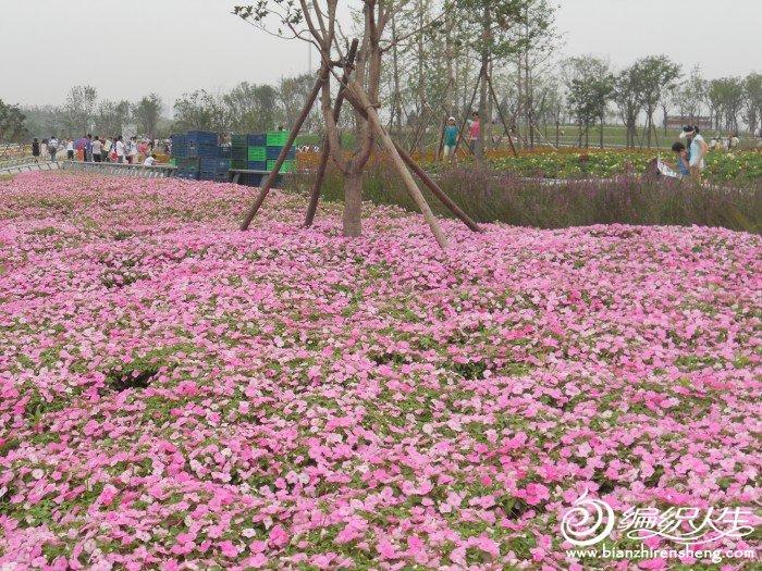 shiyuan 016.jpg