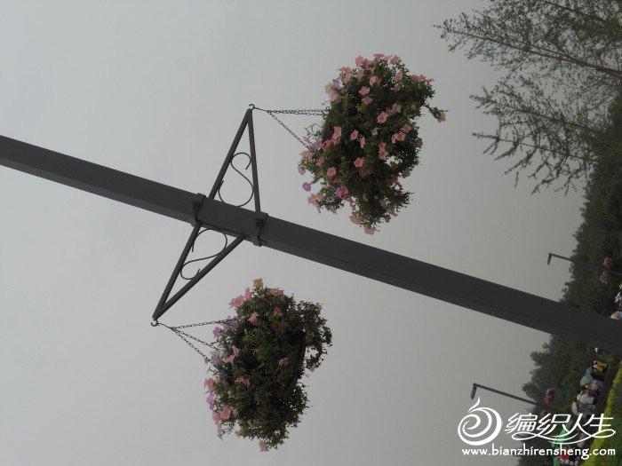 shiyuan 024.jpg