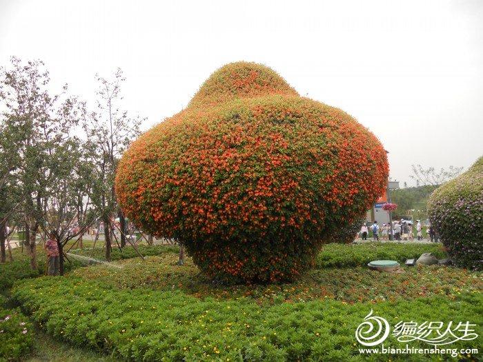 shiyuan 027.jpg