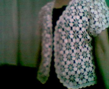 我的梅花衣1-3.jpg
