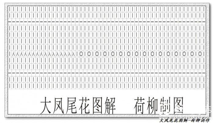 大凤尾花图解-.jpg