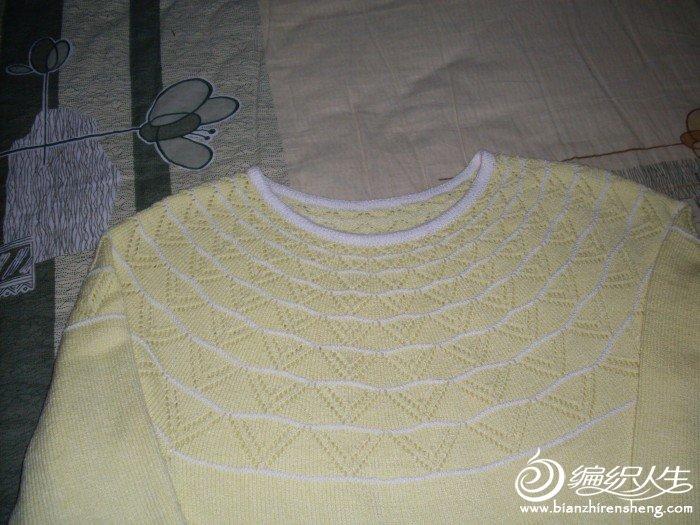 SDC10793-黄.JPG