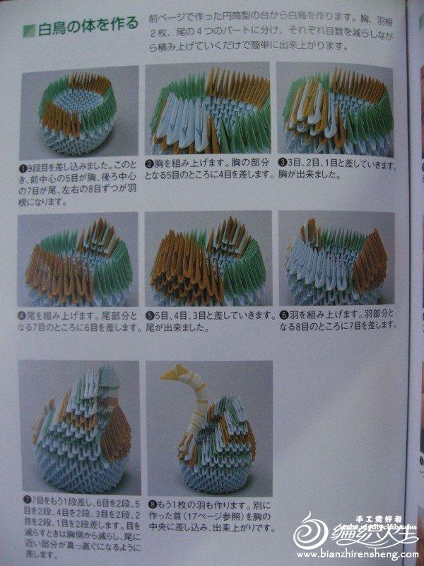 天鹅3.jpg