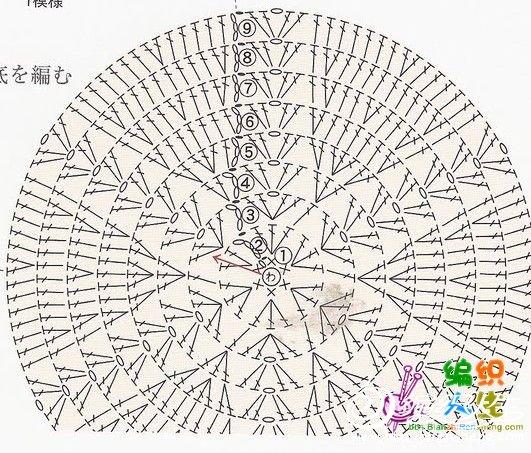 菠萝1.jpg