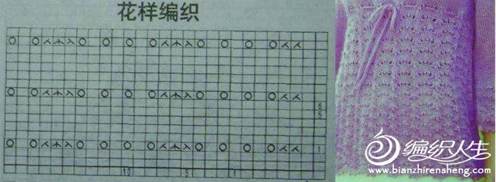 凤尾花07.jpg
