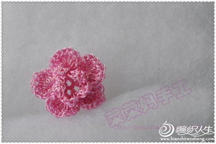 红花.jpg