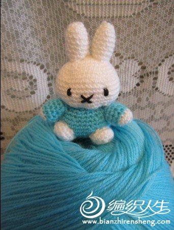 蓝色米菲兔.jpg