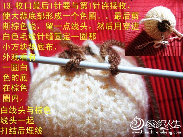 织姐教程--针织大蒜(头)= (17).jpg