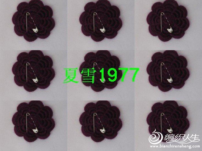 紫色貂绒 18.jpg
