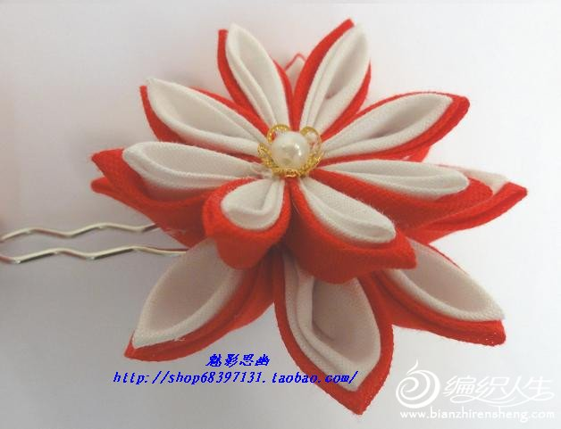 45-01-1红菊.jpg