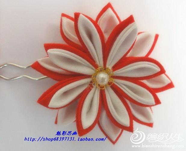 45-01-2红菊.jpg