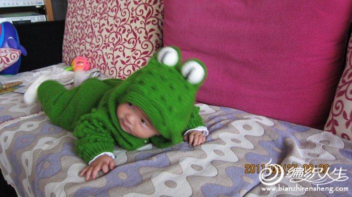 可爱的鳄鱼宝宝衣