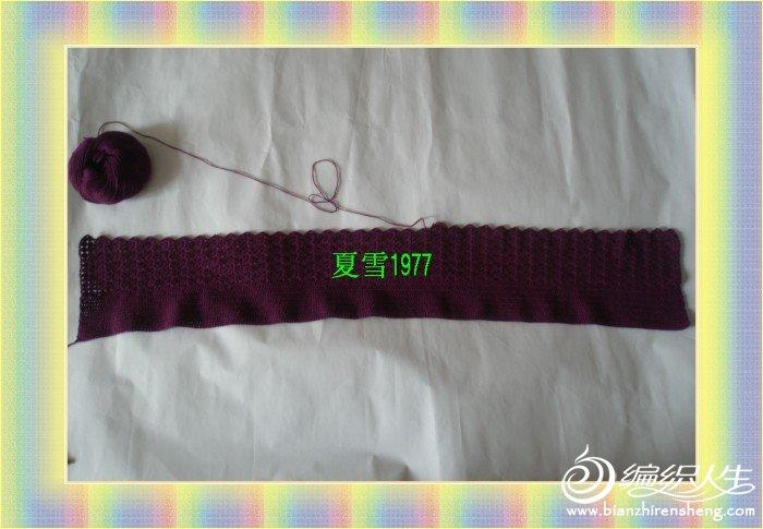 紫色貂绒 015.jpg