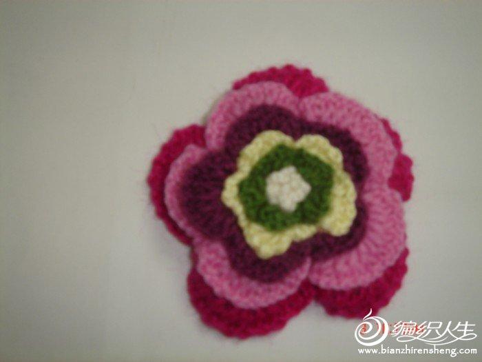 毛衣上添了小花,女儿看到了非要一朵大的,还要每层颜色不一样的,没办法刚学会钩花就试着钩了,钩完效果还 ...