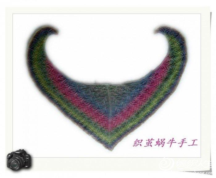 织茧蜗牛.jpg