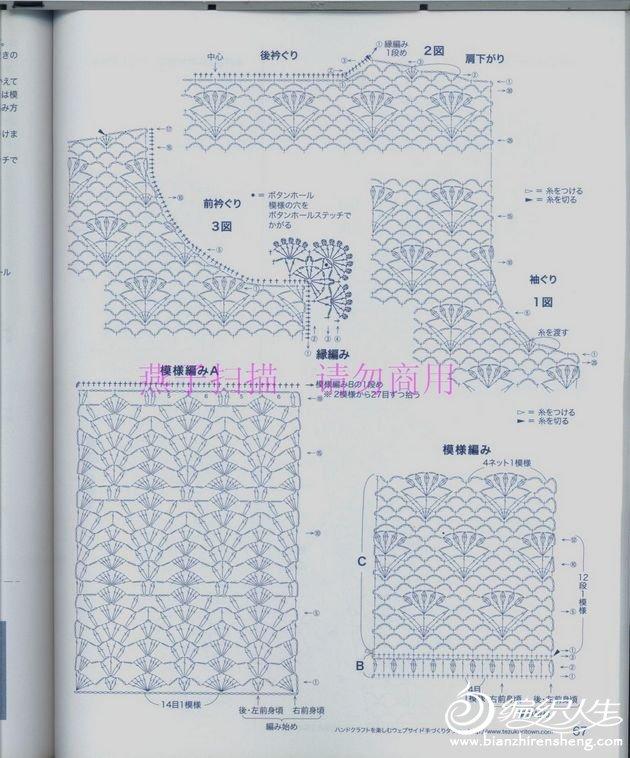 scan 581.jpg