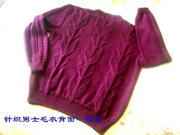 针织男士毛衣背面--织姐.jpg