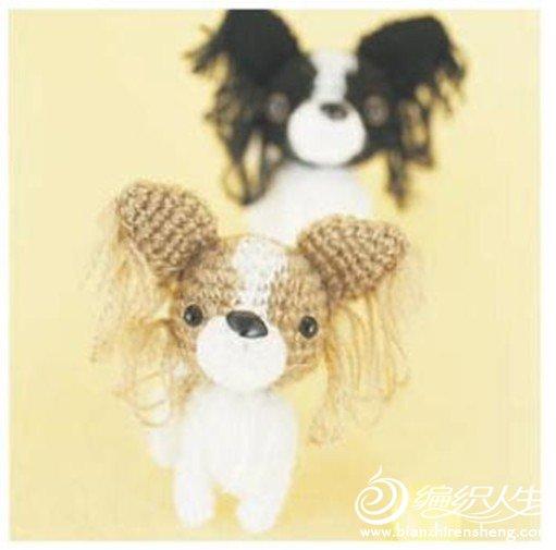 蝴蝶犬4.jpg
