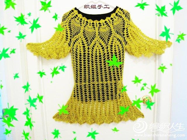织姐钩织---鲲鹏展翅(衣衣) (24).jpg