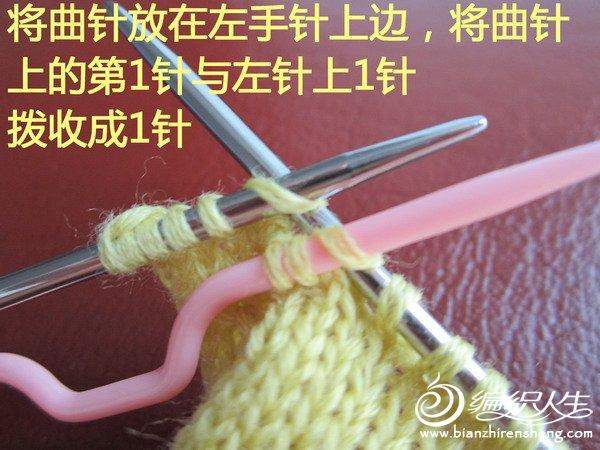 IMG_0829-.jpg