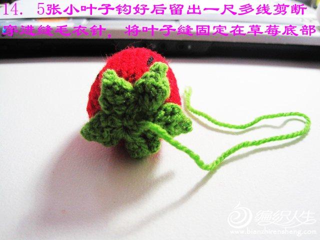 织姐教程--针织草莓。 (19).jpg