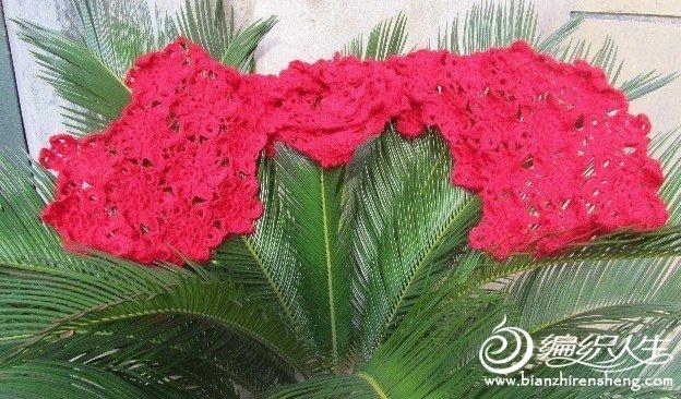 爱织老师教的 花围巾.jpg