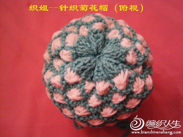 织姐--针织囡囡菊花帽和鳄鱼头围巾 (5).jpg