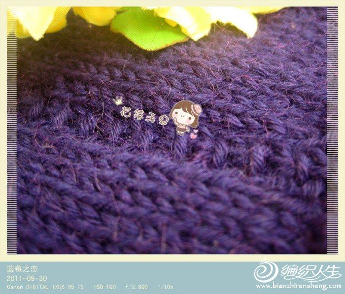 蓝莓3.jpg