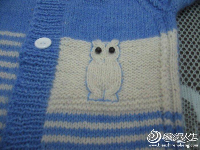 衣服上织的猫头鹰