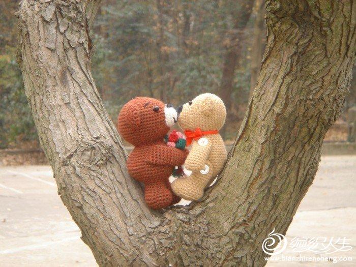 小熊情侣.JPG