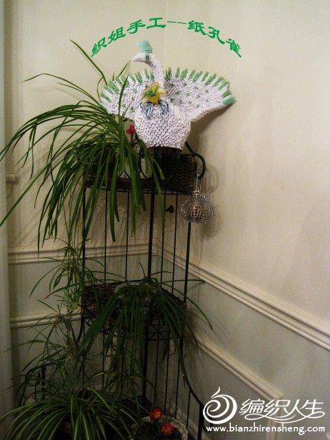 织姐手工--折纸孔雀