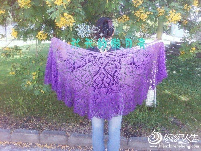 照片0454_副本紫色.jpg