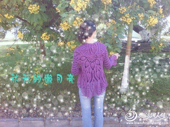 菠萝花桌布衣