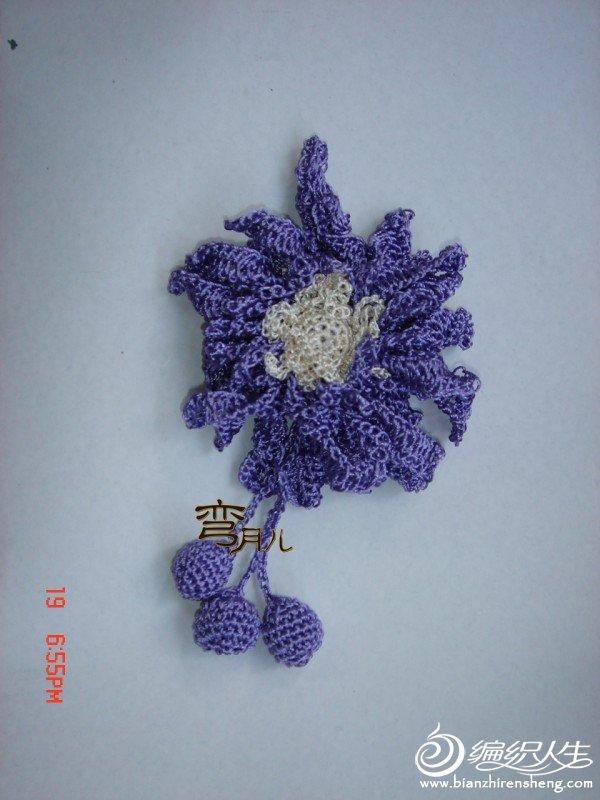 紫胸花.JPG