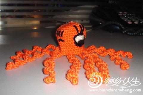 橙色章鱼.jpg
