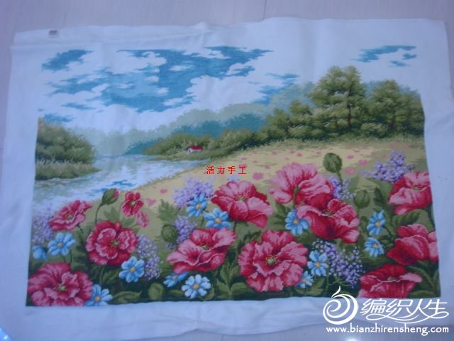 DSC07292罂粟花园.jpg