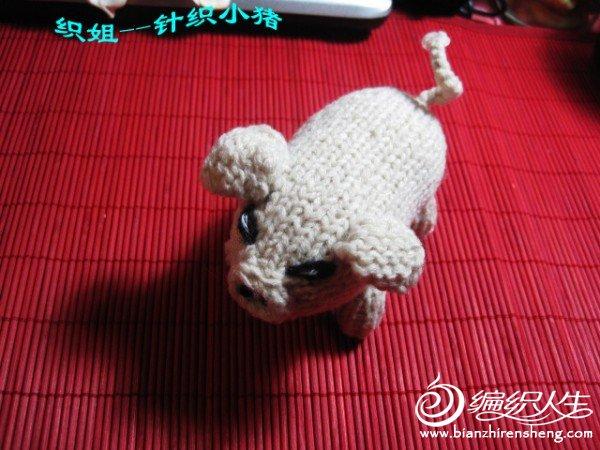 织姐手工--针织小猪 (3).jpg